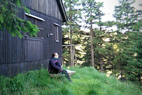 Kdo se bojí, nesmí do lesa (a spát tam), II. část